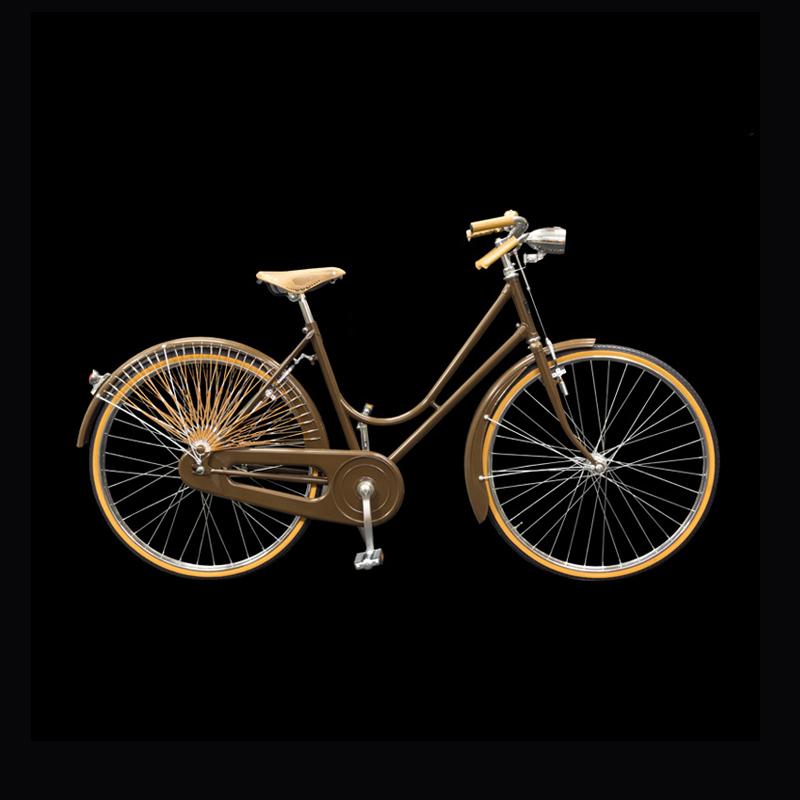 Biciclette Vintage Artigianali Cicli Martin
